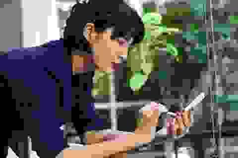 """Li Lam: """"Thật đáng tiếc nếu để vuột mẩt khoảnh khắc sáng tạo"""""""