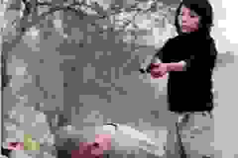 """Video IS hành quyết """"điệp viên Nga"""" là giả"""