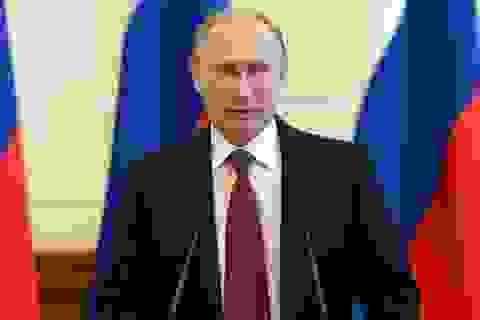 Tổng thống Putin: Pháp, Đức muốn tìm kiếm sự thỏa hiệp trong vấn đề Ukraine