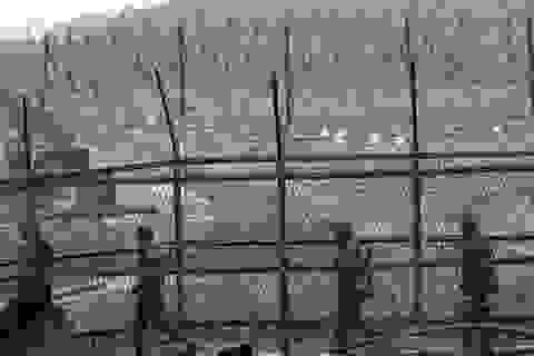 Triều Tiên đặt mìn dọc biên giới ngăn binh lính bỏ trốn