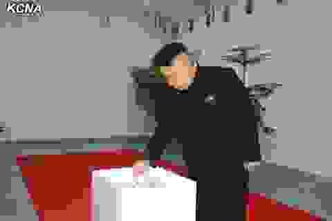 Lãnh đạo Triều Tiên Kim Jong-un đi bỏ phiếu bầu cử