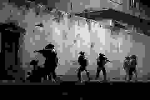 Phim về cuộc truy bắt Osama Bin Laden dự tranh Oscar