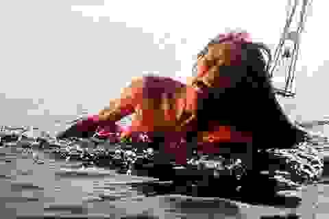 """Đạo diễn lừng danh Steven Spielberg ví phim """"Hàm cá mập"""" với Việt Nam"""