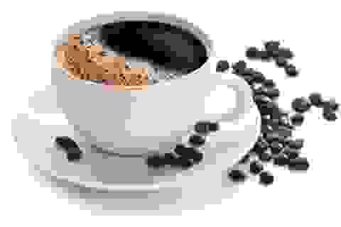 Vi khuẩn nghiện cafein - Hướng tới phương thức khử ô nhiễm mới