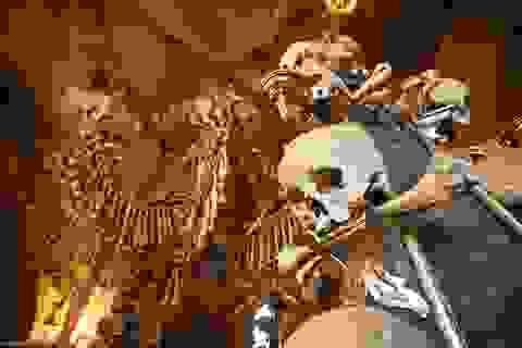 Rùng rợn nhà thờ bằng xương người
