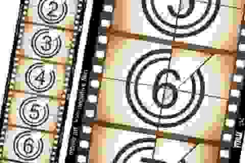 Phim và chiếu