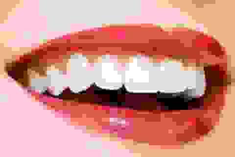 Tái tạo răng người từ các tế bào gốc lấy từ... nước tiểu
