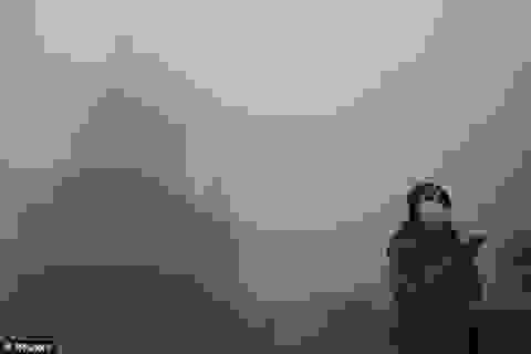 Hệ thống hút sương khói do ô nhiễm không khí