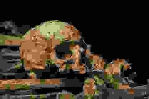 Bộ tộc ăn thịt người cuối cùng trên thế giới