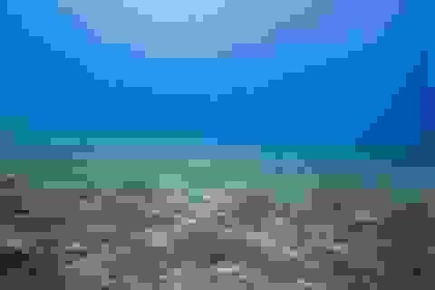 Kho nước ngọt khổng lồ dưới Đại Dương