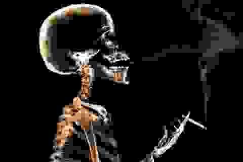 Cận cảnh sự hủy hoại ghê rợn của hút thuốc lá