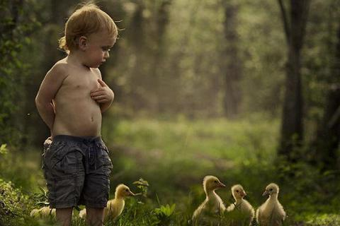 """Hình ảnh """"gây sốt"""" về cuộc sống thường nhật của hai em nhỏ"""