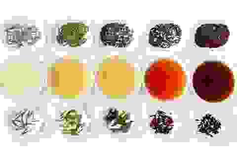 Sự thật về tác dụng của trà xanh
