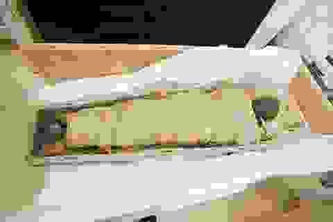 Xác ướp Ai Cập 1.700 tuổi còn nguyên não