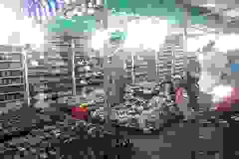 Về Hậu Giang dạo chợ đêm bên kênh xáng Xà No