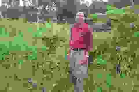 Một thương binh khiếu nại việc mất đất, mất chế độ chính sách: UBND tỉnh Sóc Trăng chỉ đạo làm rõ