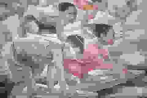 Việt Nam mở triển lãm tranh về siêu bão Hải Yến
