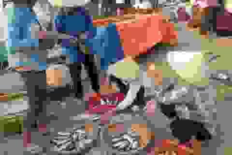 Cấp hơn 10.000 nhãn mác xác nhận hải sản ở vùng biển an toàn.