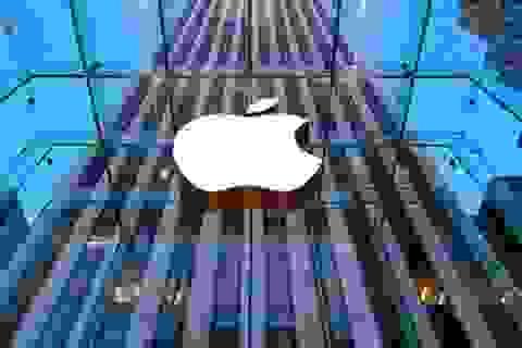 Apple - Từ người tiên phong trở thành kẻ chạy theo xu thế