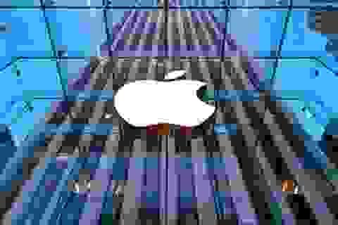 Apple thay đổi loạt nhân sự cao cấp trước khi năm 2015 kết thúc