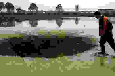 """Hố tử thần xuất hiện dưới đáy hồ """"nuốt chửng"""" 25 tấn cá"""