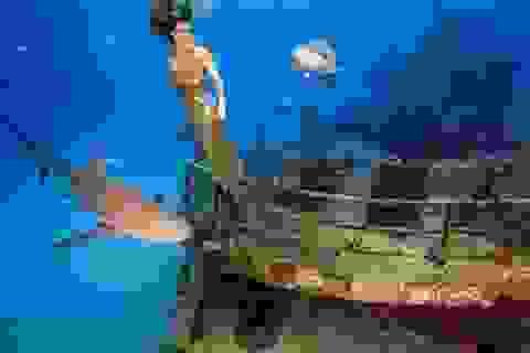 Người mẫu lặn cùng cá mập để chụp ảnh thời trang