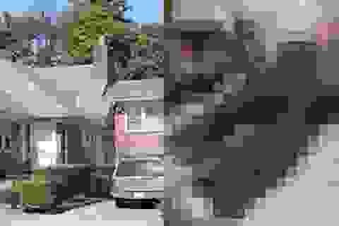 Mẹ sống cùng nhà với thi thể con trai 20 năm mà không hay biết