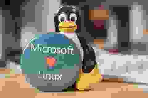 Microsoft bất ngờ thay đổi chính sách từ đối đầu sang ủng hộ Linux