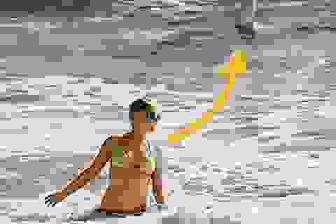 Thót tim khoảnh khắc cá mập bơi sau lưng mà cô gái không hề hay biết