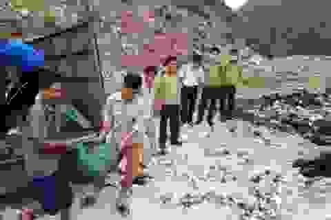 Ninh Bình: Tiêu hủy 1,3 tấn xương, mỡ lợn thối