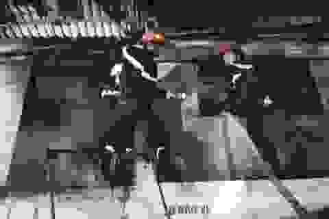 Người dân góp từng xô nước cứu căn nhà gặp hỏa hoạn