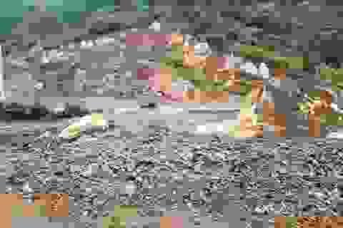 Vụ  người dân khai thác đất trái phép: Tan hoang hàng chục ha rừng