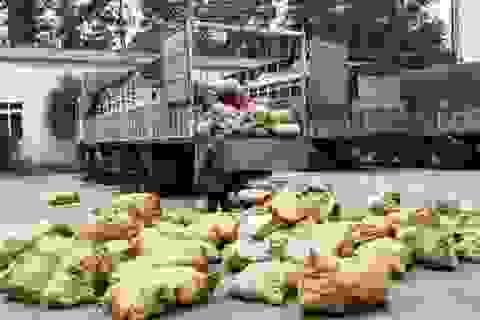 Bắt giữ 5 tấn mỡ bẩn trên đường ra Hà Nội tiêu thụ
