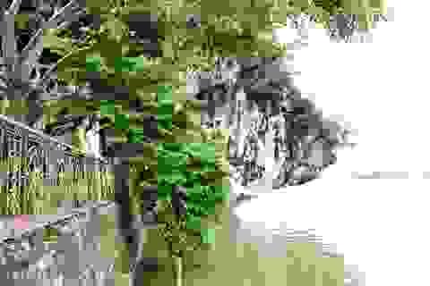 """Chiêm ngưỡng """"núi thơ"""" độc đáo nhất Việt Nam"""