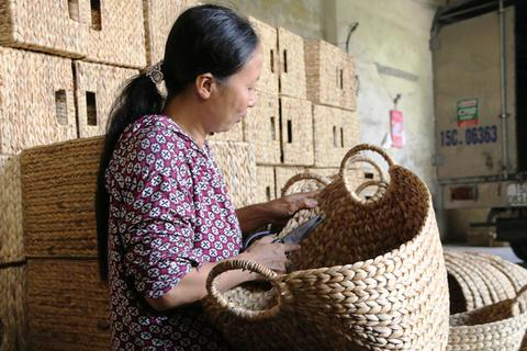 Ninh Bình: Nông dân đan bèo tây xuất ngoại kiếm tiền triệu