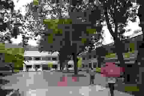 Tạm thu tiền của học sinh: Hiệu trưởng bị phạt 15 triệu đồng