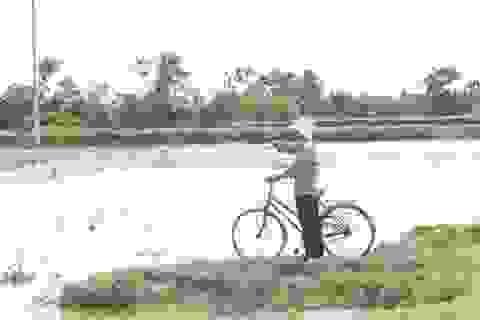 """Đất nhiễm mặn, người dân """"treo niêu"""""""