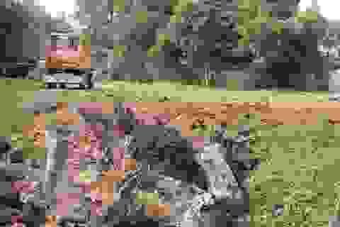 Thanh Hoá: Chủ tịch thị trấn bất ngờ huy động máy múc san ủi đất của dân?