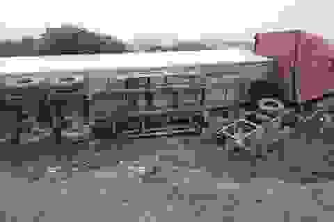 Lái xe buồn ngủ, xe container bay xuống ruộng