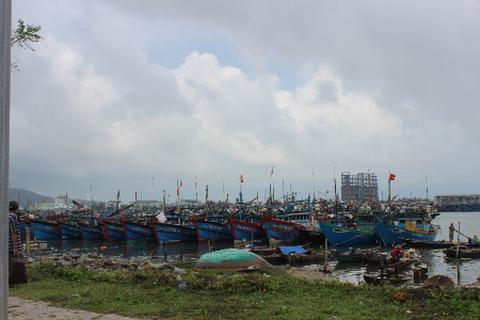 Hàng vạn tàu thuyền hối hả tránh bão số 3