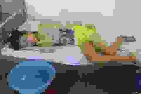 Số phận éo le của cô bé câm điếc mồ côi cha mẹ bị bệnh ung thư máu