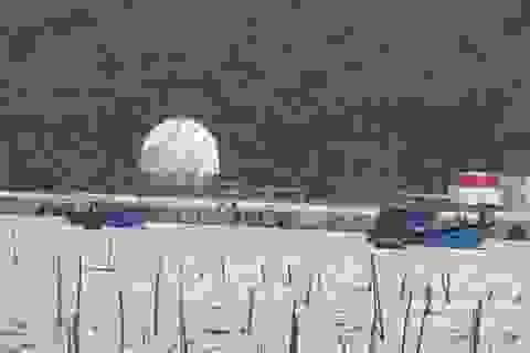 Tàu cá Quảng Ngãi cùng 10 ngư dân trôi dạt trong vùng biển thời tiết xấu