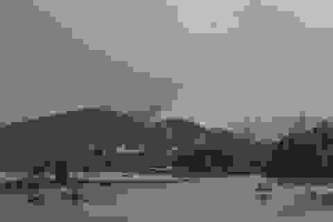 Cháy rừng trồng tại khu vực núi Hầm Vàng