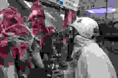 Đà Nẵng: Phải thường xuyên kiểm tra cửa hàng ăn uống ít nhất 1 lần/tuần