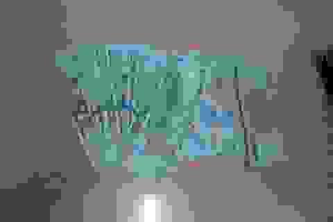 Hơn 60 giờ truy bắt nữ giúp việc bỏ thuốc mê ông chủ Hàn Quốc cướp tài sản