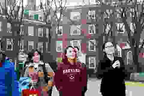 Mỹ Tâm xinh tươi khi ghé thăm sinh viên Việt Nam tại Mỹ