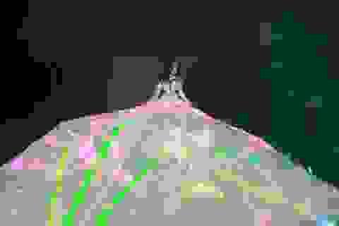 Giang Hồng Ngọc diện váy khổng lồ nặng gần 100kg biểu diễn