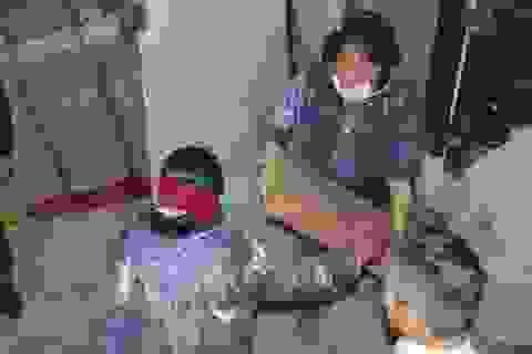 Hà Tĩnh bắt đầu tiêu hủy gần 300 tấn hải sản nhiễm độc