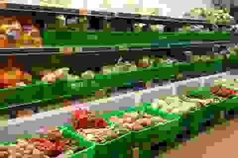 Dân vùng Vịnh ngày càng chuộng rau quả Việt Nam