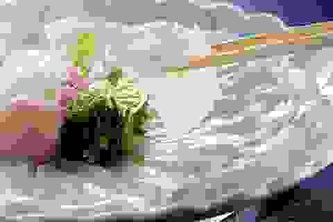 Đến Seaba, ăn cá Song thả ga, giá chỉ còn 50%